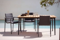 Core-dining-chair