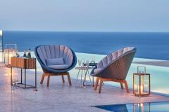 Peacock-lounge-chair