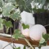 PureWhite05 100x100 - IRISLIGHTS valguskett Pure White, 20 palli
