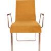 1200130 3 100x100 - DUTCHBONE Flor tool käetugedega- 2 värvi