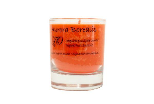 troopiliste puuviljade smuuti 600x407 - Свеча из соевого воска Aurora Borealis - Смузи из тропических фруктов