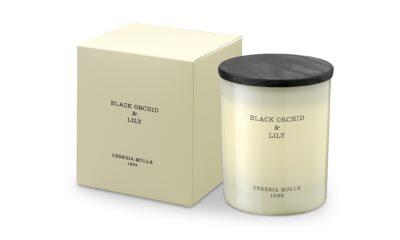 5543 1 400x240 - Lõhnaküünal Cereria Molla- Black Orchid & Lily