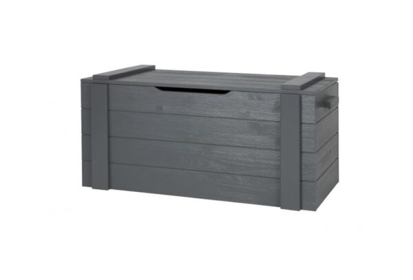 365563 GBS 1 600x407 - Mänguasjade kast