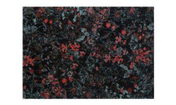 SECRET BLACK 1 360x216 - FARGOTEX Secret vaip, black