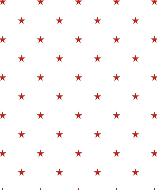397 02 Star 1 600x726 - Duro fliistapeet 397-02