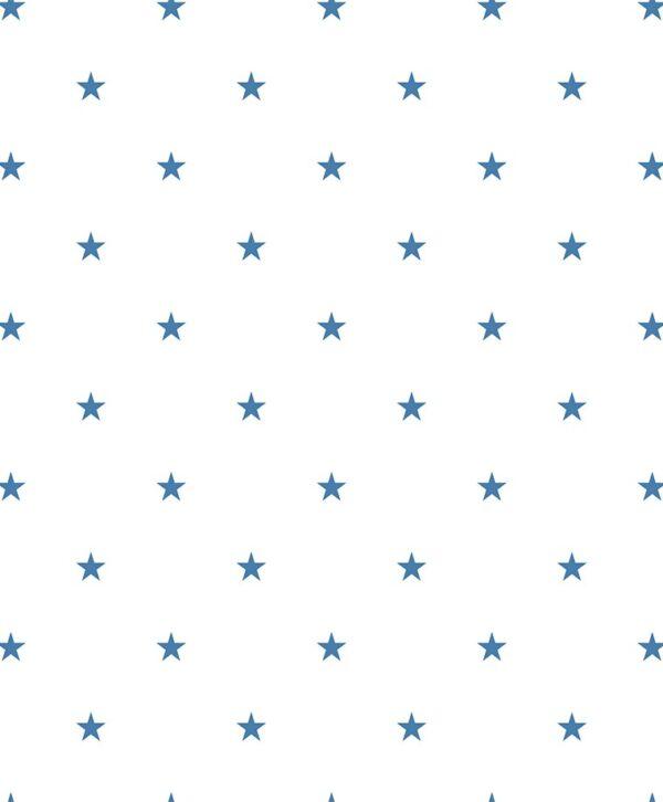 397 03 Star 1 600x726 - Duro fliistapeet 397-03
