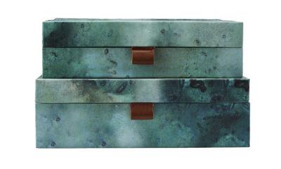 sk1513 01 400x240 - House Doctor karp laiguline
