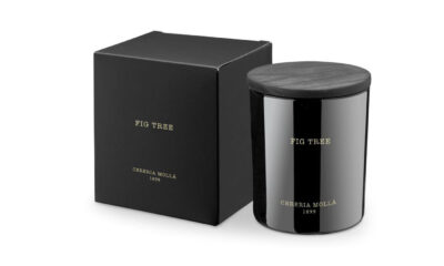 13764 400x240 - Lõhnaküünal Cereria Molla - viigimari