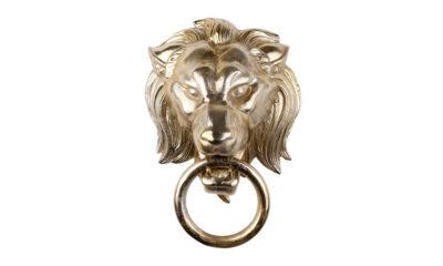 28621 400x240 - Uksekoputi lõvi